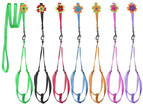 DOGLine Nylon Step-In Harness Flower and Leash Combo