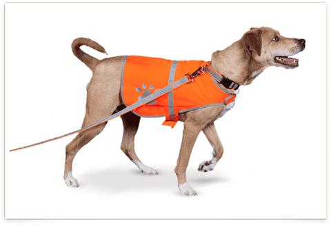 Petflect Reflective Lightweight Dog Safety Vest (All Sizes) (price varies by size) - SitStay - 1