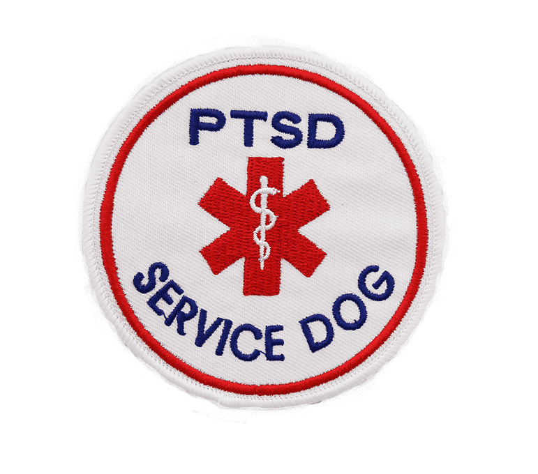 Patch, PTSD Service Dog