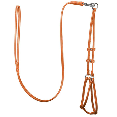 DOGLine Round Leather Step-In Harness With Leash - SitStay - 7