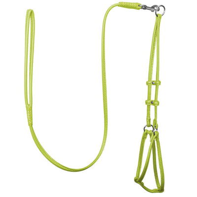 DOGLine Round Leather Step-In Harness With Leash - SitStay - 8