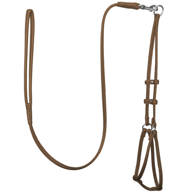 DOGLine Round Leather Step-In Harness With Leash - SitStay - 9