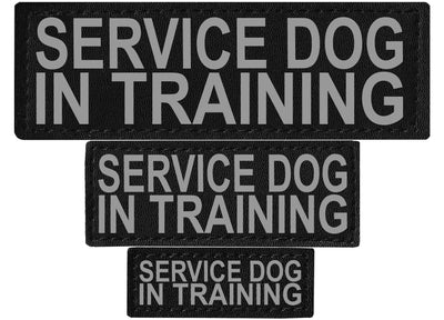 "DOGLine Velcro Patches ""Service Dog In Training"" 2 Pack - SitStay - 1"