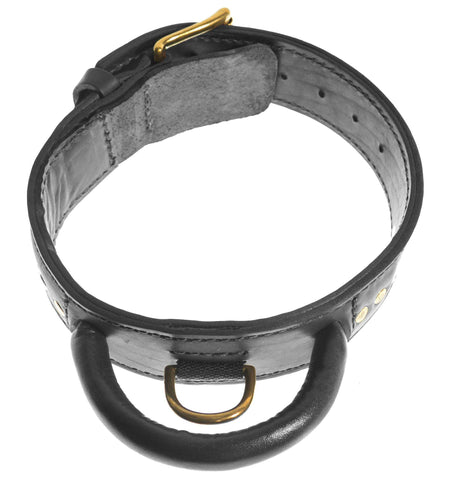 DOGLine Two-Ply Leather Collar with Handle