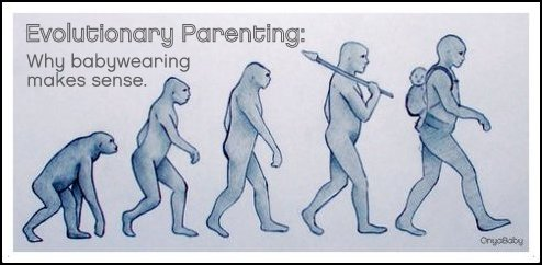 Evolution of babywearing