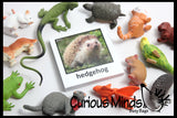 Montessori Animal Match - Miniature Animals with Matching Cards - 2 Part Cards.  Montessori learning toy, language materials - Pet Animals