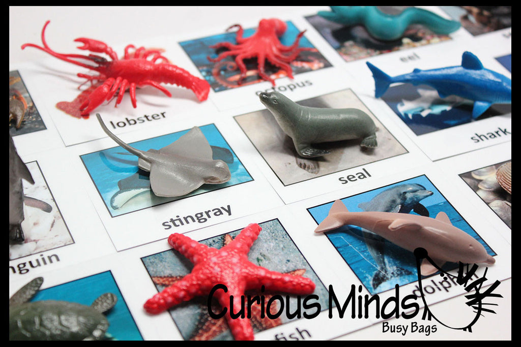 Montessori Animal Match - Miniature Animals with Matching Cards - 2 Part Cards.  Montessori learning toy, language materials - Ocean Animals