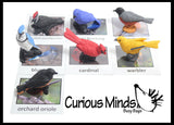 Animal Match - BIRD - Miniature Animals with Matching Cards - 2 Part Cards.  Montessori learning toy, language materials