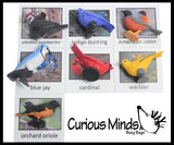Montessori Bird Animal Match - Miniature Animals with Matching Cards - 2 Part Cards.  Montessori learning toy, language materials