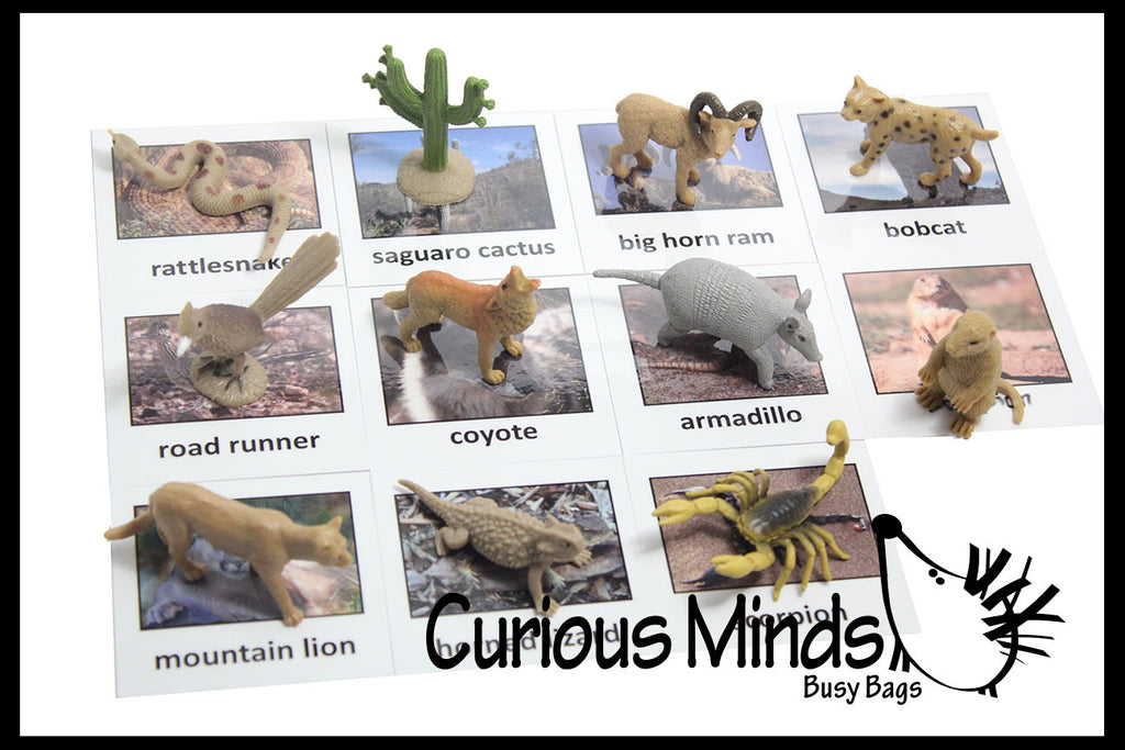 Montessori Animal Match - Miniature Animals with Matching Cards - 2 Part Cards.  Montessori learning toy, language materials - Desert Animals