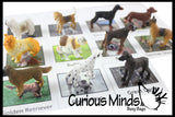 Dog Montessori Animal Match - Miniature Animals with Matching Cards - 2 Part Cards.  Montessori learning toy, language materials - Puppy Pet Doggy
