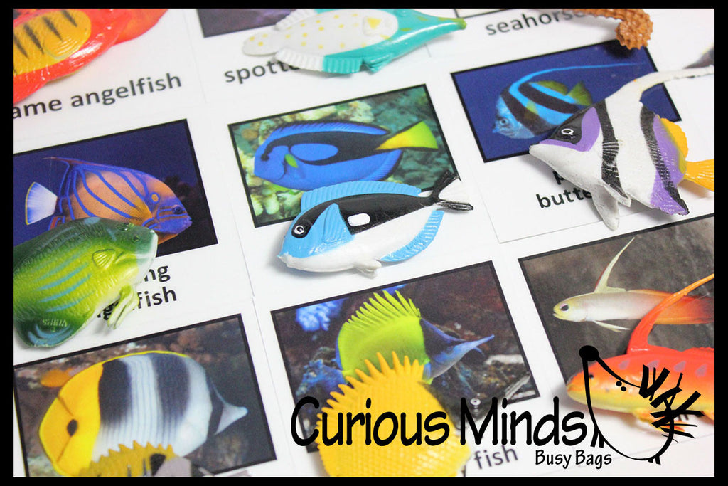 Montessori Animal Match - Miniature Animals with Matching Cards - 2 Part Cards.  Montessori learning toy, language materials - Tropical Fish