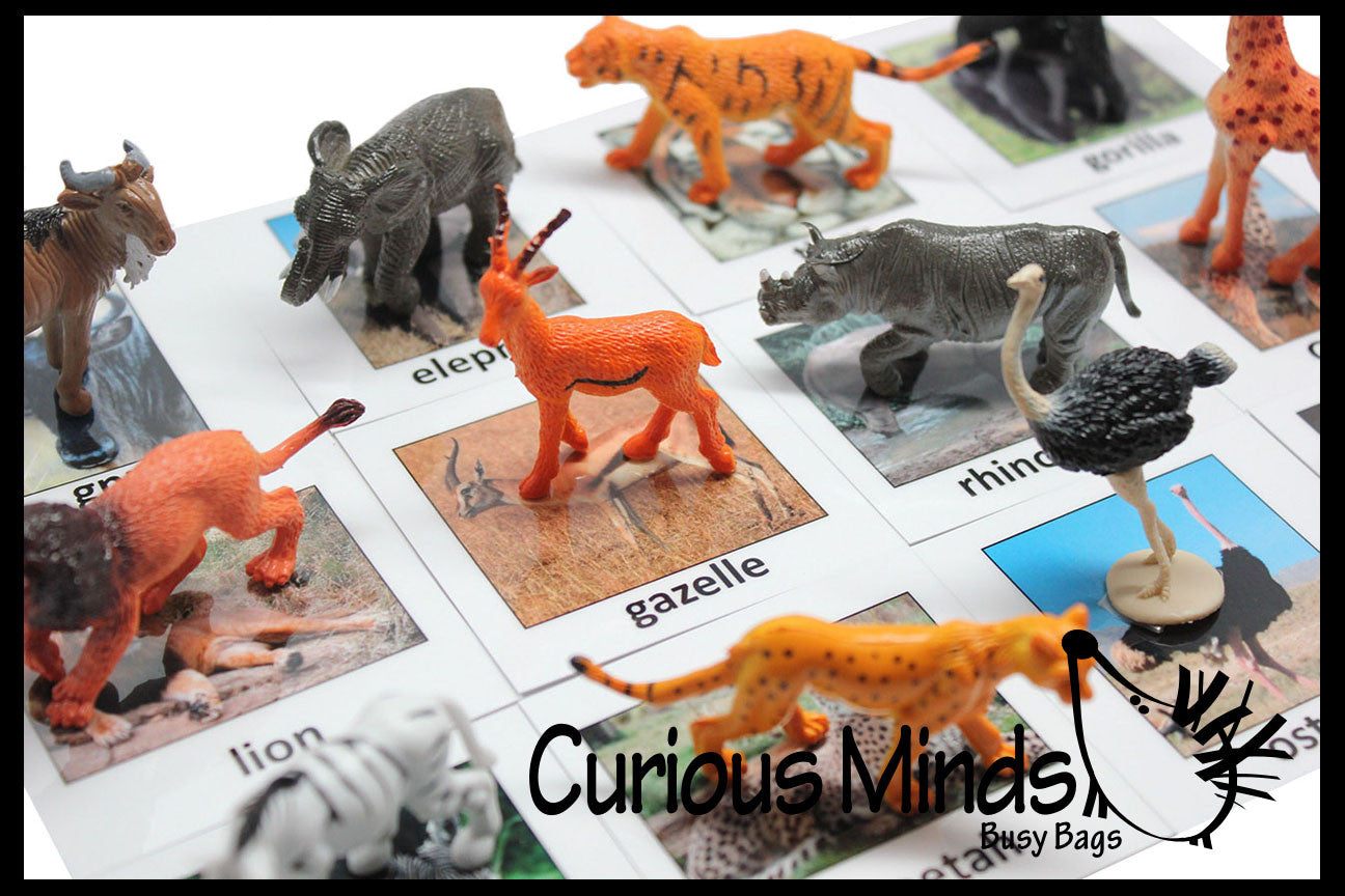 Animal Match - SAFARI -Miniature Animals with Matching Cards - 2 Part Cards.  Montessori learning toy, language materials - Safari Jungle Zoo Animals
