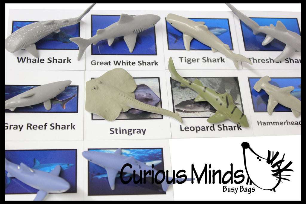 Animal Match - SHARK - Miniature Animals with Matching Cards - 2 Part Cards.  Montessori learning toy, language materials