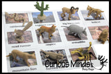 Animal Match - DESERT - Miniature Animals with Matching Cards - 2 Part Cards.  Montessori learning toy, language materials - Desert Animals