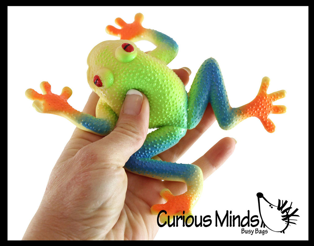 Tree Frog Stretchy and Squeezy Toy - Crunchy Bead Filled - Fidget Stress Ball