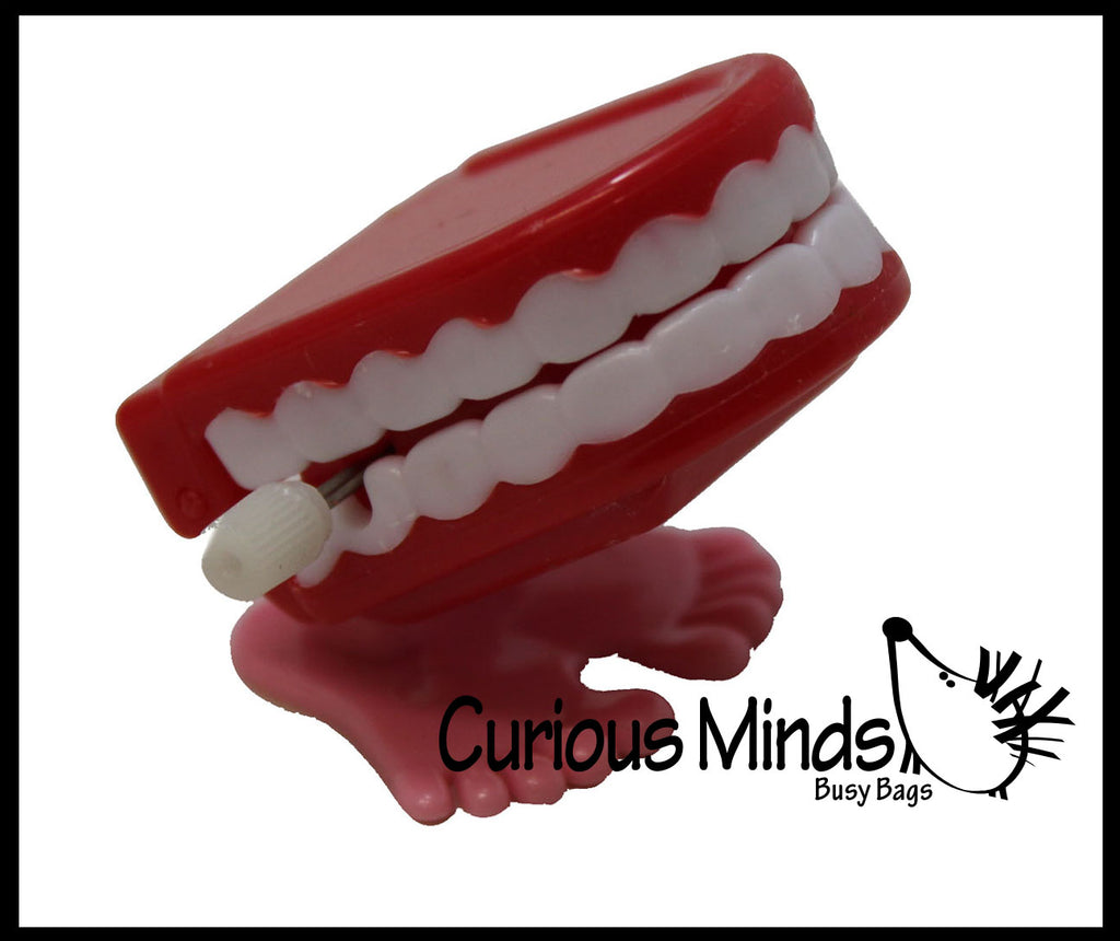 Wind Up Chattering Teeth - Dental Treasure Toys