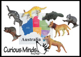 Continent Critters - Match the animals to their geographic location - Montessori geography materials - Continent box