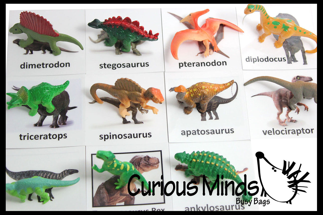 Animal Match - DINOSAURS - Miniature Animals with Matching Cards - 2 Part Cards.  Montessori learning toy, language materials - Dinosaurs