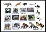 Animal Match - ENDANGERED SPECIES - Miniature Animals with Matching Cards - 2 Part Cards.  Montessori learning toy, language materials