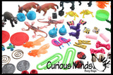 Preschool and Kindergarten Matching Activity with Miniature Objects - early learning toy