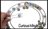 Ring with Marbles - Free Play Transfer Fine Motor Activity