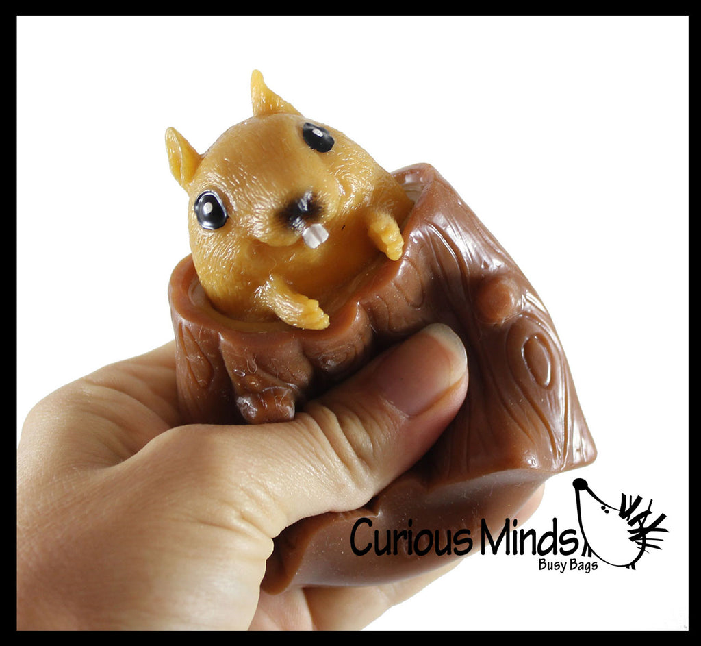 Squirrel in Stump - Adorable Pop Up - Cute Squeeze Toy - Fun Fidget - Unique OT Hand Strength, Fine Motor