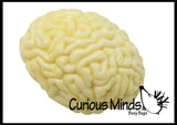 Brain Squishy Stress Ball - Body Parts - Anatomy