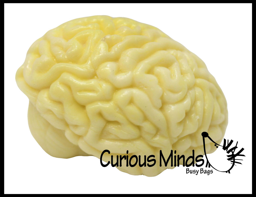 Brain Squishy Sticky Stress Ball - Body Parts - Anatomy