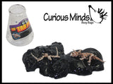 Tar Pits Dinosaur Skeleton Slime - Putty / Slime