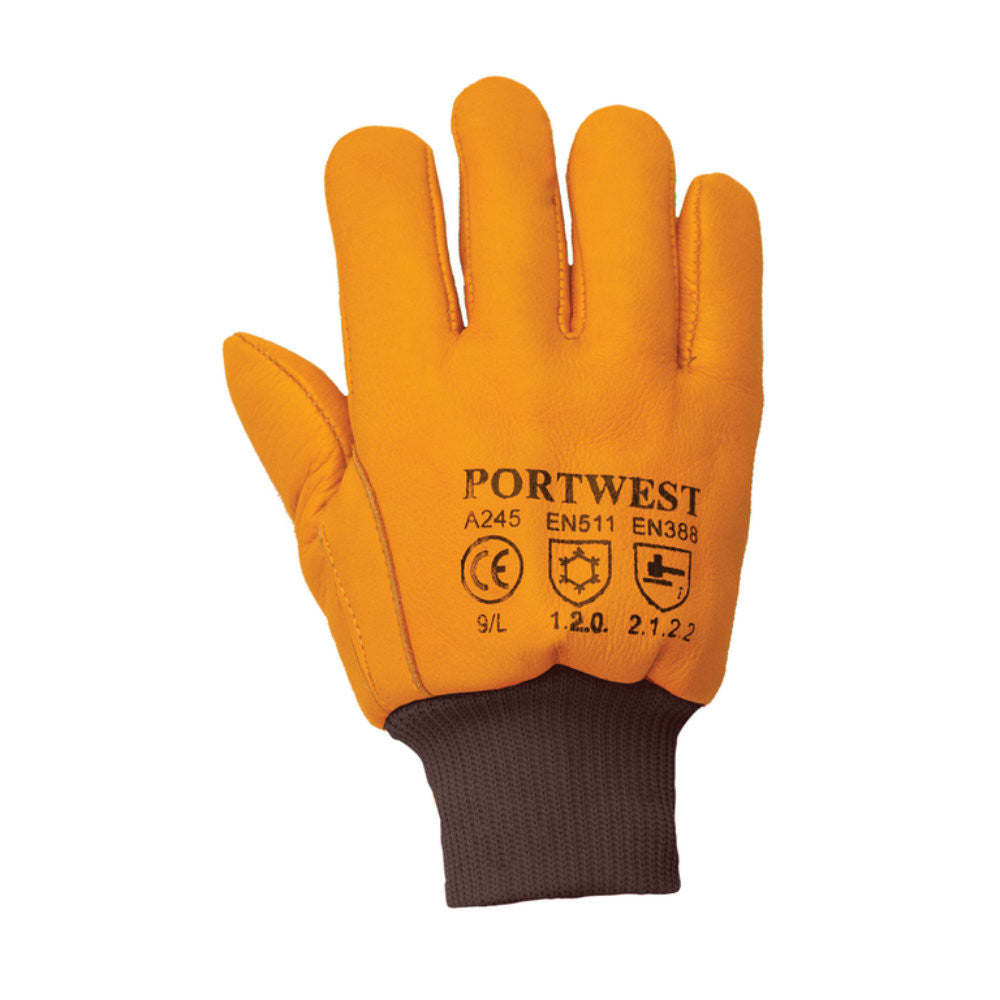 Portwest A245 Antarctica Thinsulate™ Gloves