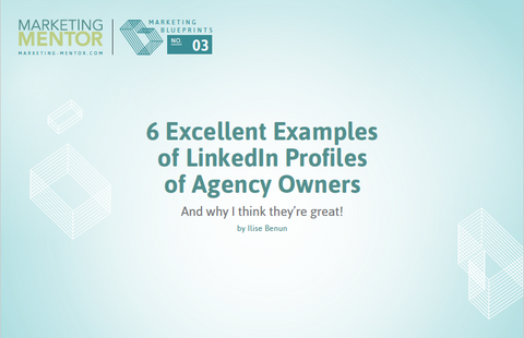 Excellent Examples #3 -- LinkedIn Profiles of Agency Owners