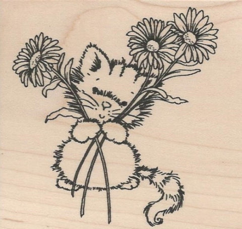 7006J Daisy Kitty