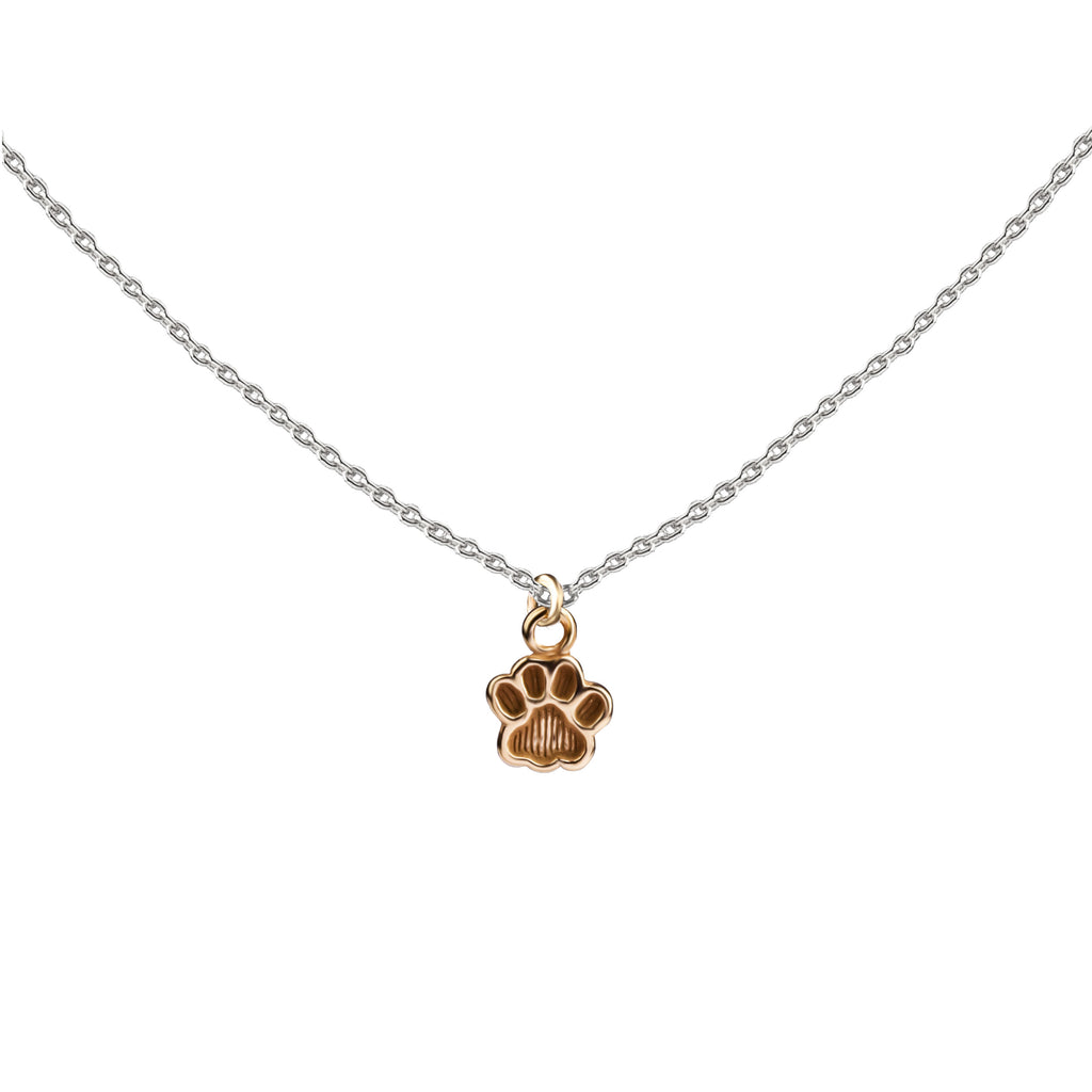 Paw Print | Little Layer Necklace | Gold