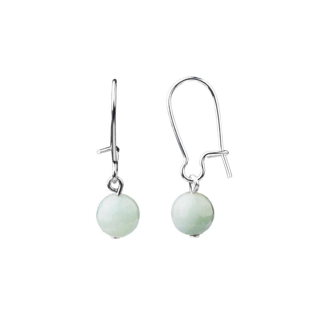 Earring | Kidney Wire - Small  | Amazonite