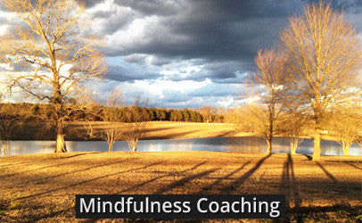 Living in Ease Mindfulness Coaching