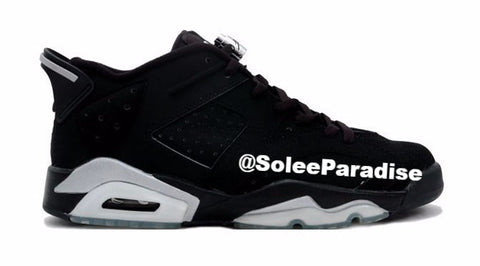 Jordan 6 Metallic Silver Low
