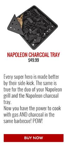 Barbecues Galore Gift Guide | Napoleon Charcoal Tray