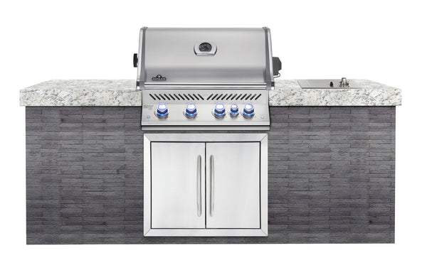 Napoleon BIPRO500RB Built In Barbecue Head