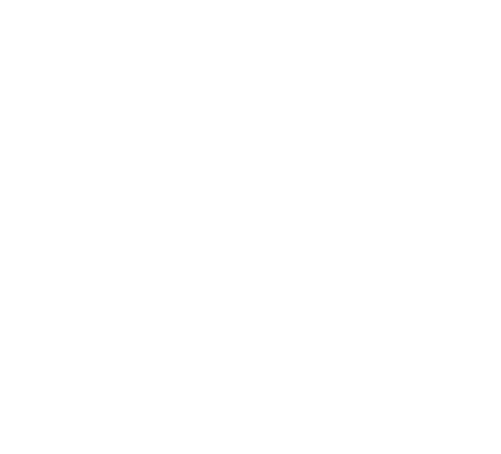 Condition Zero Mounts