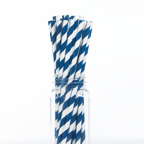 Paper Straws : Navy Blue Stripes