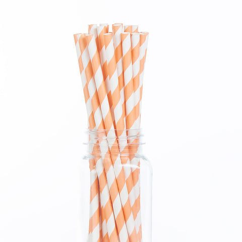 Paper Straws : Peach Stripes