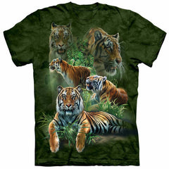The Clan of Jungle Tigers