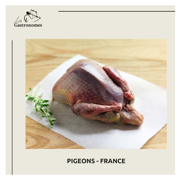 Pigeon whole - France