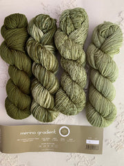 Urth Merino Gradient kit #811