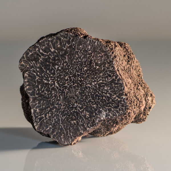 Fresh truffle Fresh Black Truffle- Tuber Melanosporum (Selling season: November - March) - Zigante Tartufi Online Shop, Truffle Shop, Truffle Products