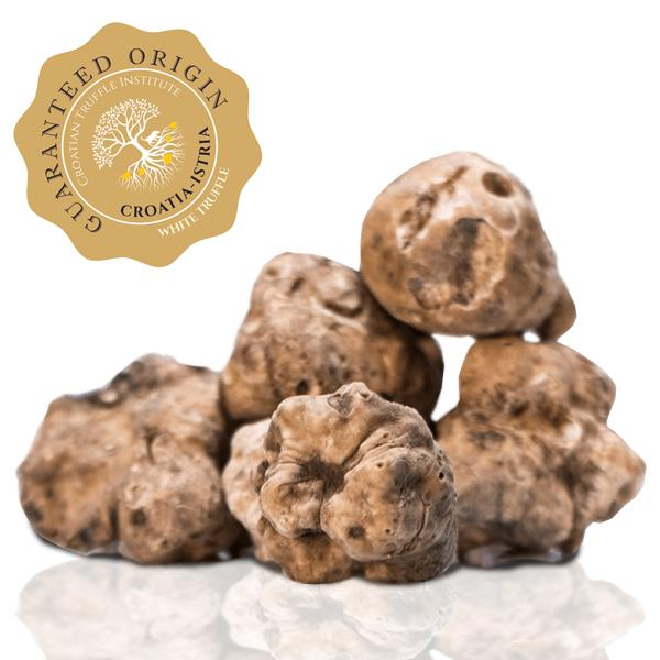 Fresh truffle Fresh White Truffle-Tuber Magnatum Pico (Selling season: October - December.) - Zigante Tartufi Online Shop, Truffle Shop, Truffle Products