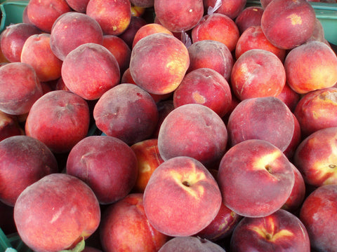 Zymotic Republic Fruit` Peaches - Zymotic