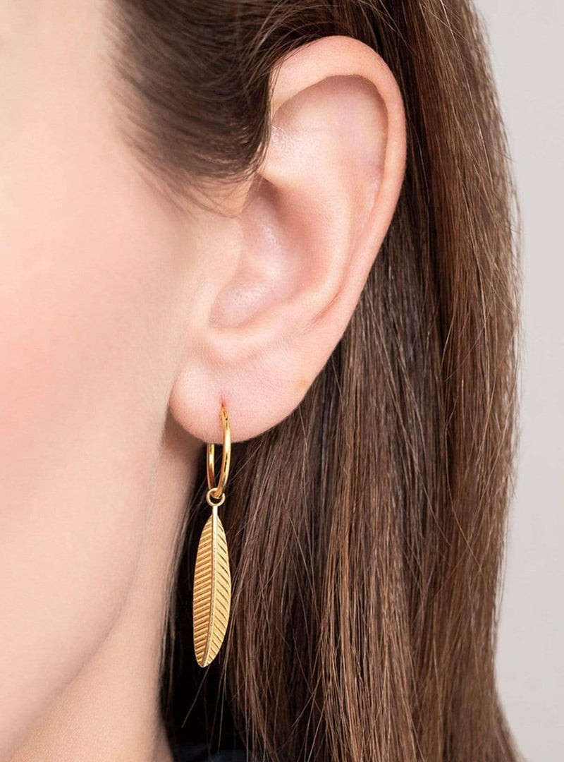 a beautiful story Womens jewellery Feather hoop earring - sterling silver gold-plated - 1 piece