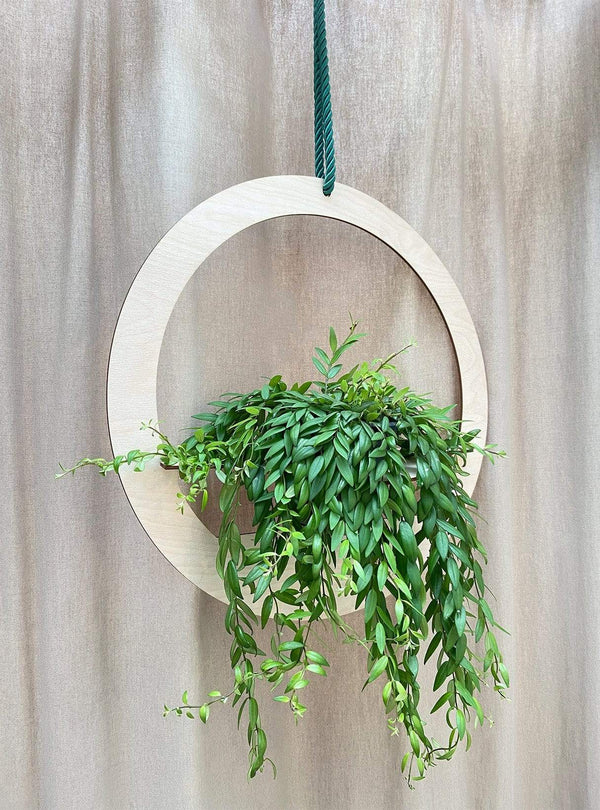 all things we like Plant hanger - wood round 50 cm